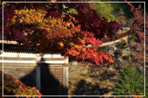 湖南三山の紅葉の様子